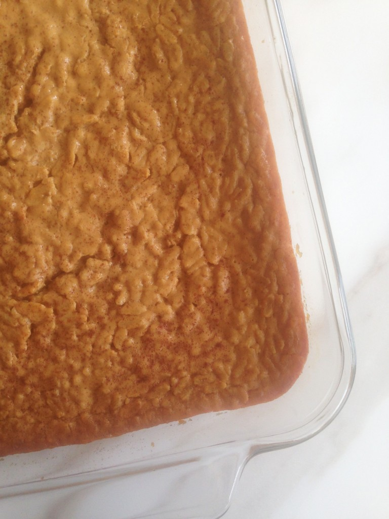 Brown Sugar Pumpkin Brown Rice Pudding with Maple Cinnamon Whipped Topping 1