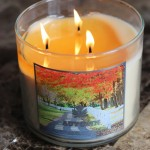 bath and body works fall autumn candle