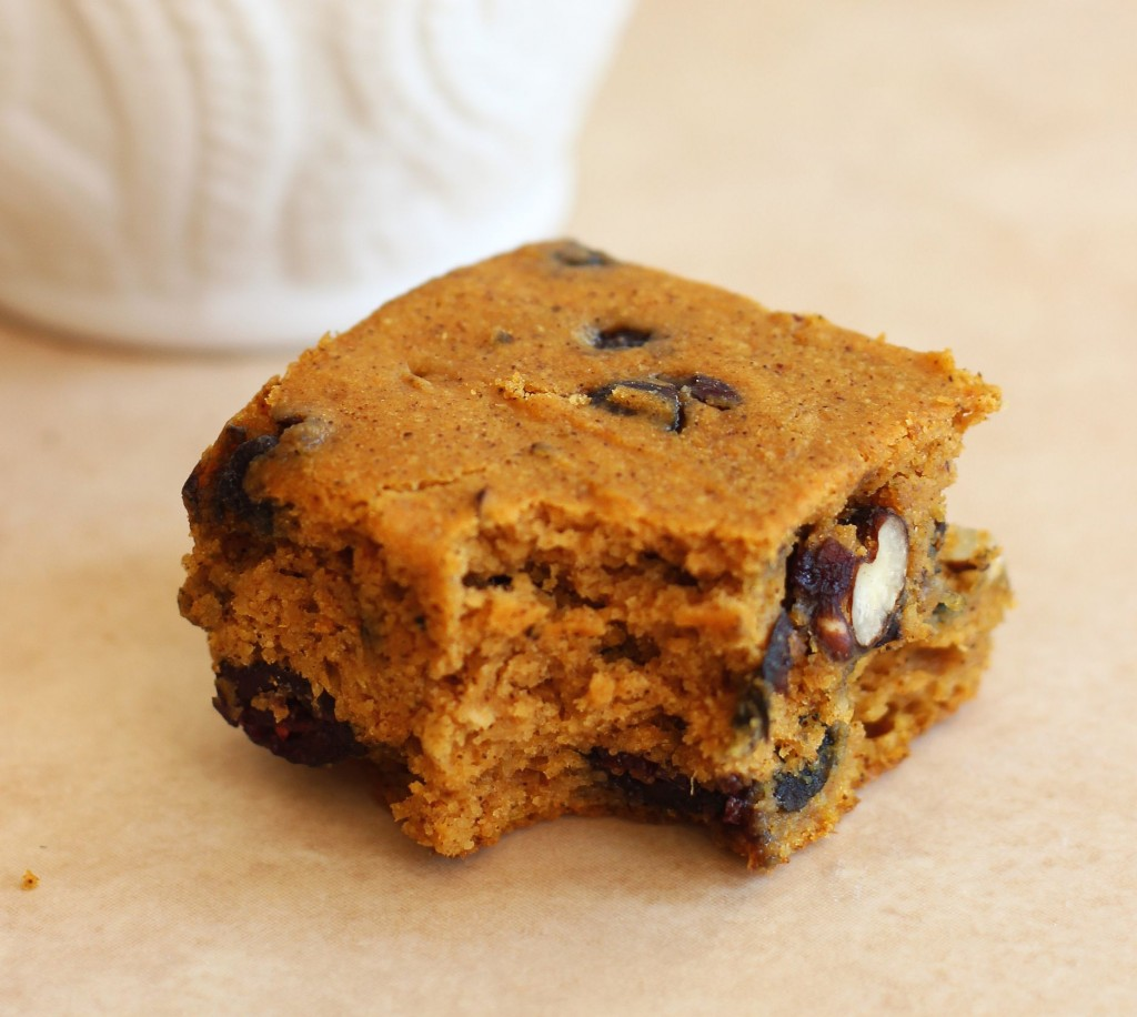 Pumpkin Protein Bars with Blueberries and Pecans