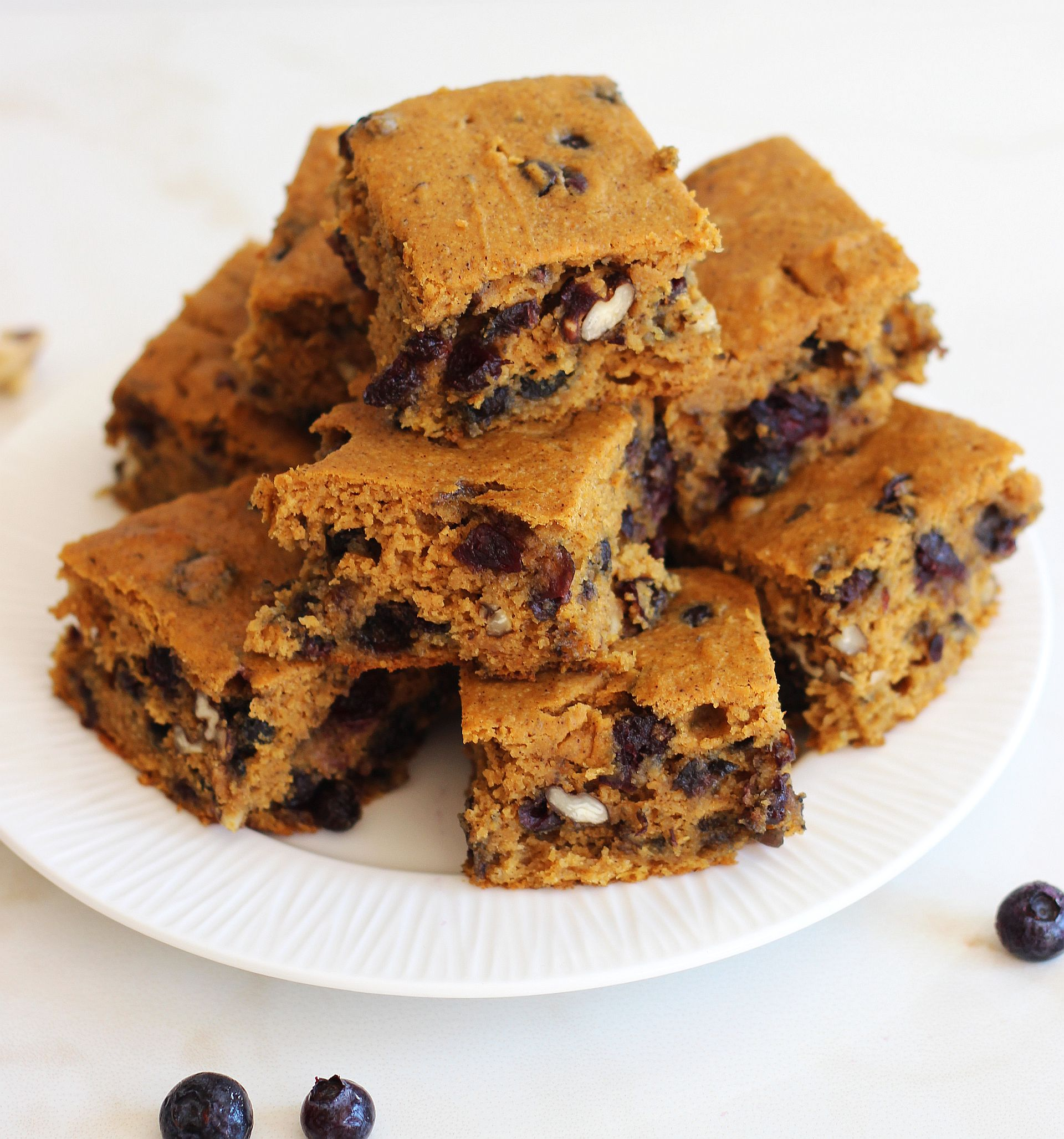 Pumpkin Protein Bars w/ Blueberries, Cranberries, and Pecans