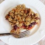 cranberry orange oatmeal streusel breakfast bars 15
