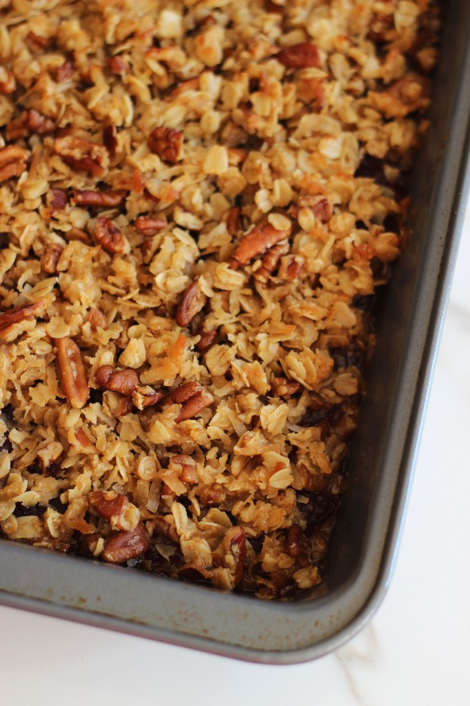 cranberry orange oatmeal streusel breakfast bars 3