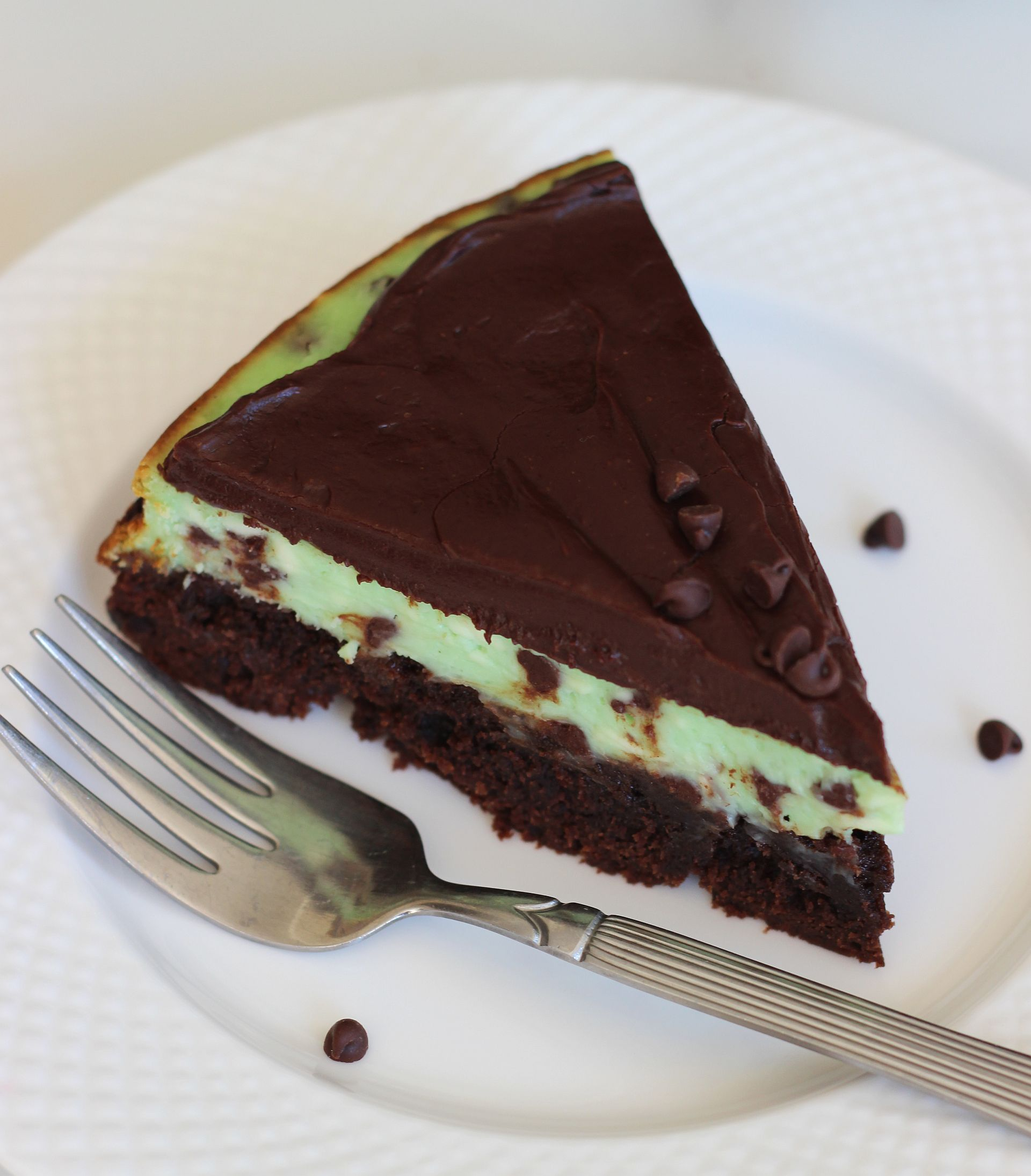 Mint Chocolate Chip Brownie Cheesecake. Sell My Diamonds For Cash Security Lock Door. The Best Orthopedic Surgeon In The World. Conference Room Scheduling Software. Online Summer Classes For High School Students. Physical Therapy Assistant Schools In Indiana. Owner Insurance Company Naval Medical Command. West Viriginia University Painting Raleigh Nc. Acadian Family Dentistry Dental In San Antonio