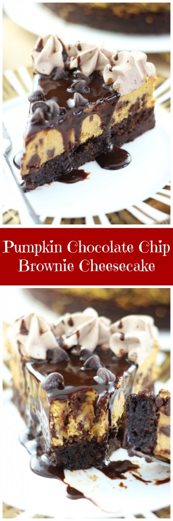pumpkin chocolate chip brownie cheesecake pin