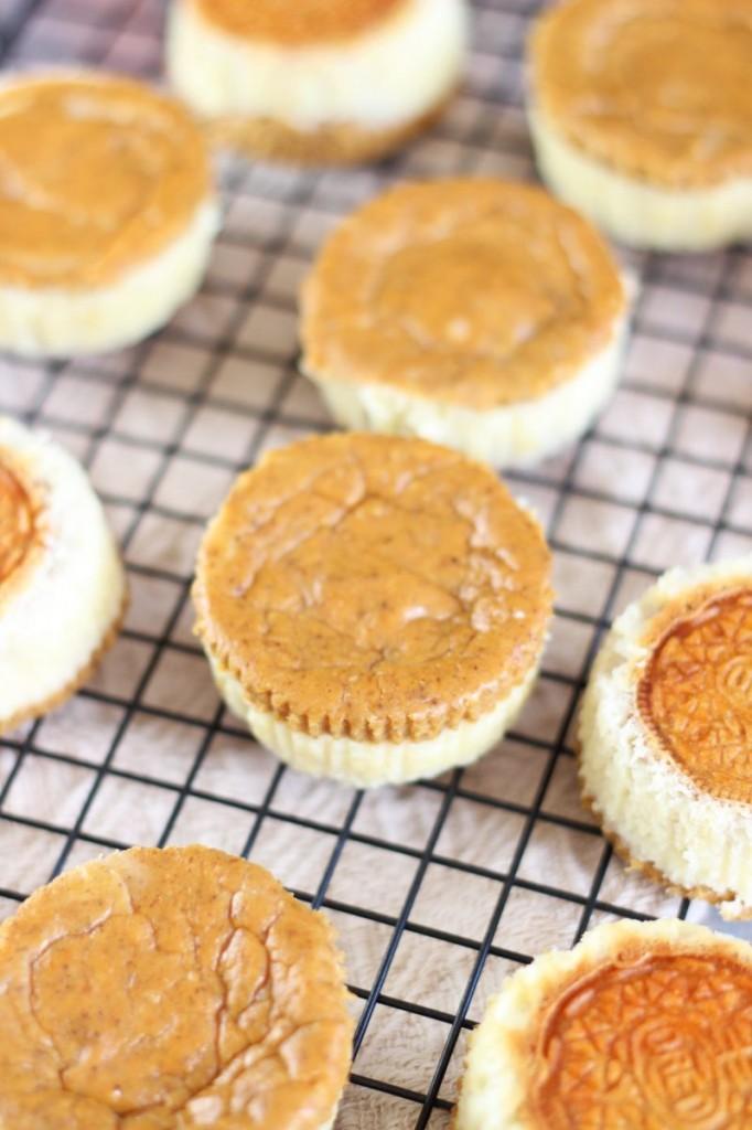 pumpkin spice oreo cheesecakes 5