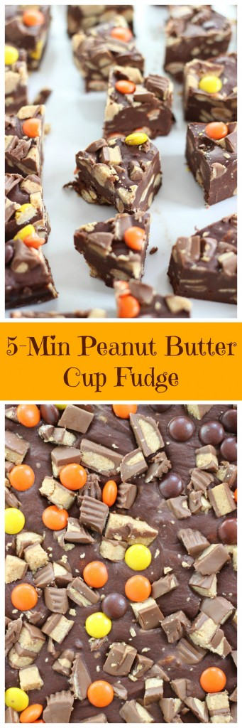 peanut butter cup fudge pin