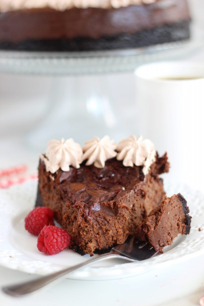 nutella espresso cheesecake with raspberry swirl 21