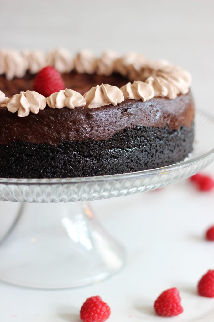 nutella espresso cheesecake with raspberry swirl 3