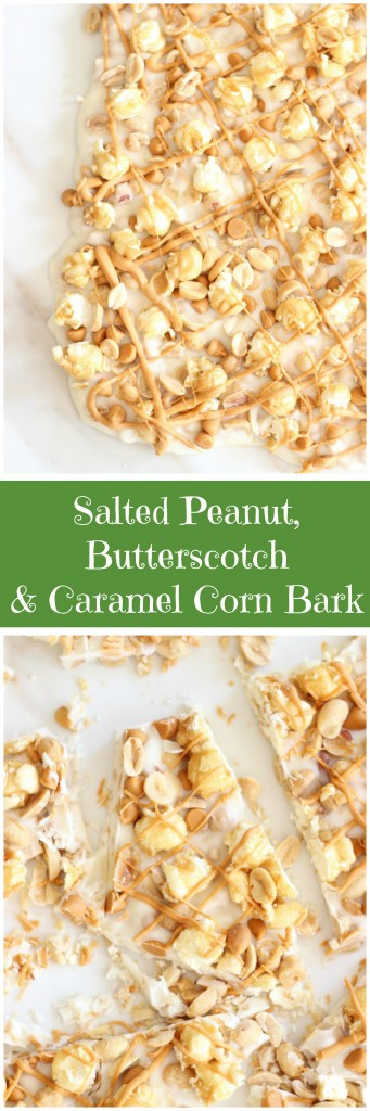 salted peanut butterscotch & caramel corn white chocolate bark pin