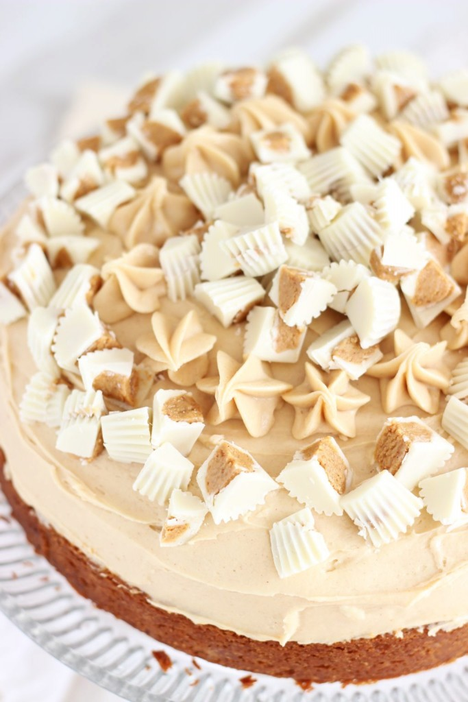 white chocolate peanut butter blondie cheesecake 15