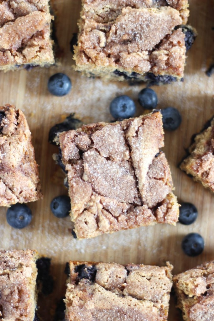 blueberry cinnamon swirl protein coffee cake 13