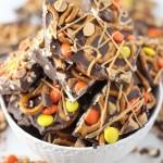 Chocolate Peanut Butter Pretzel Bark