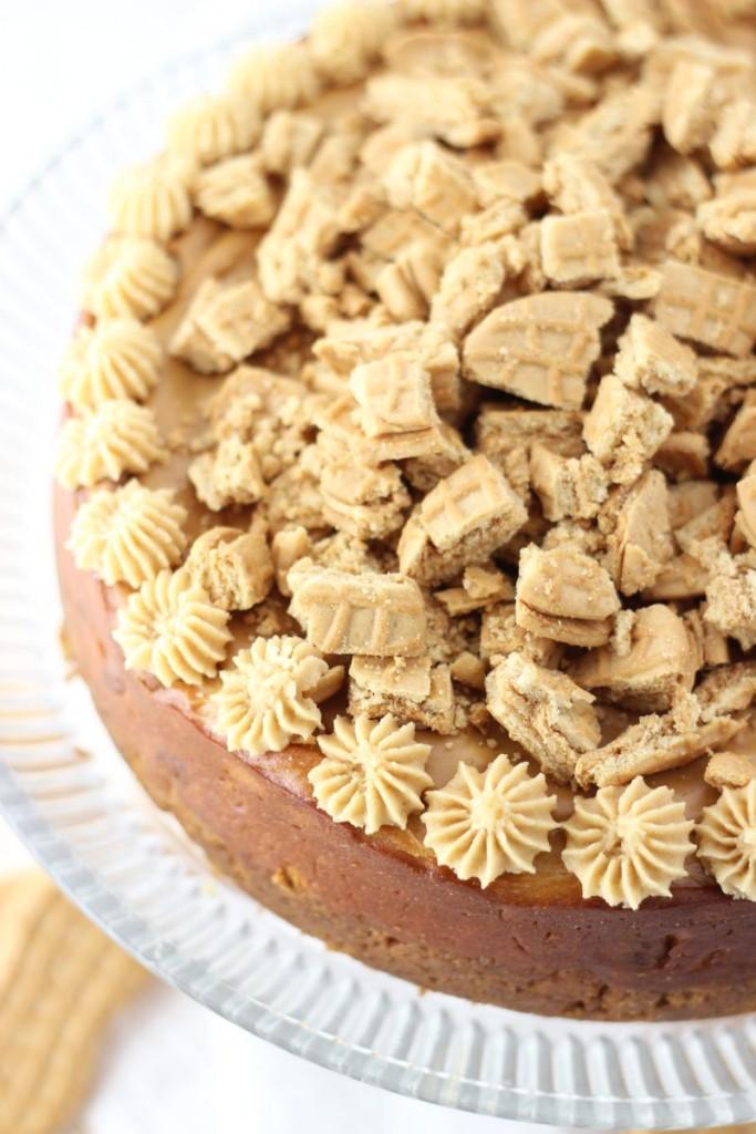 nutter butter peanut butter cheesecake 1