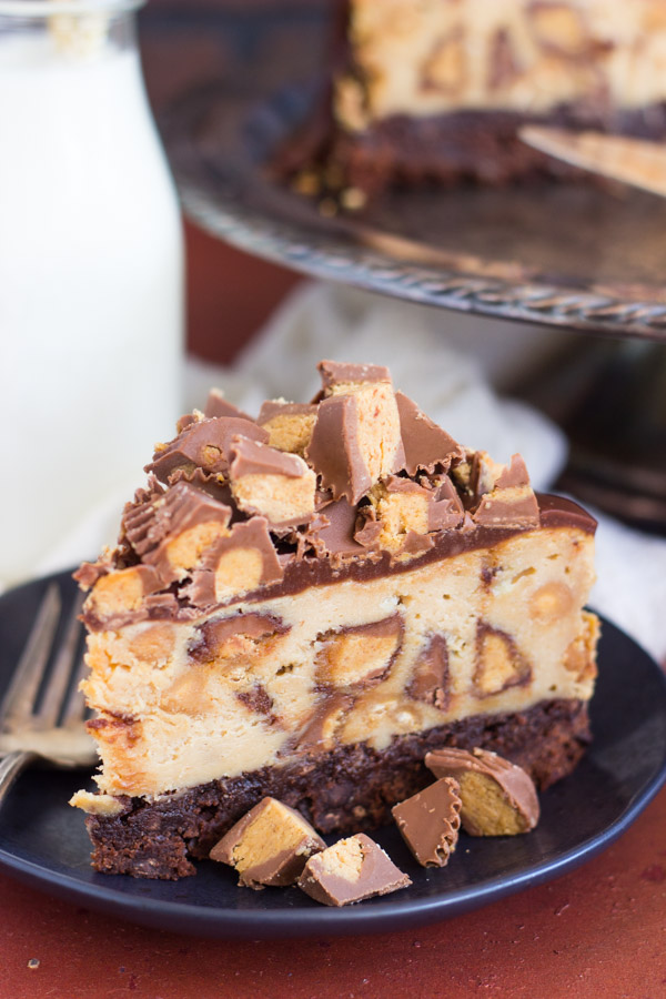 peanut-butter-cup-brownie-cheesecake-21