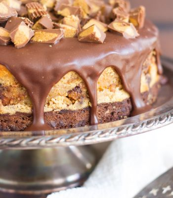 peanut-butter-cup-brownie-cheesecake-4