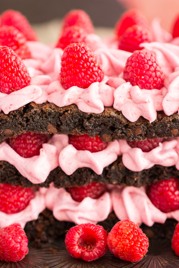 Raspberry Brownie Torte (10)