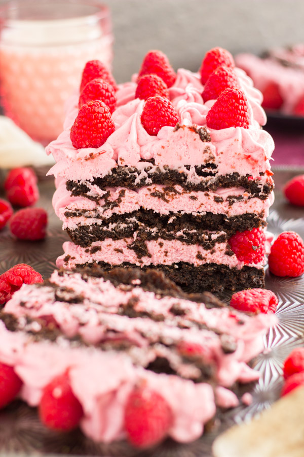 Raspberry Brownie Torte (15)