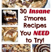 30 Insanely Decadent S'mores Desserts You Need To Try This Summer!