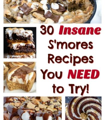 30 Best S'mores Recipes You Need To Try featured image thegoldlininggirl.com