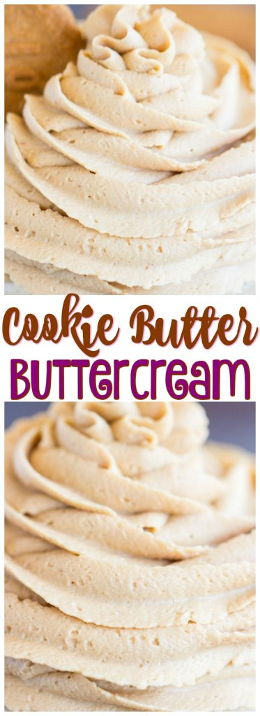 Cookie Butter Frosting recipe image thegoldlininggirl.com pin 2