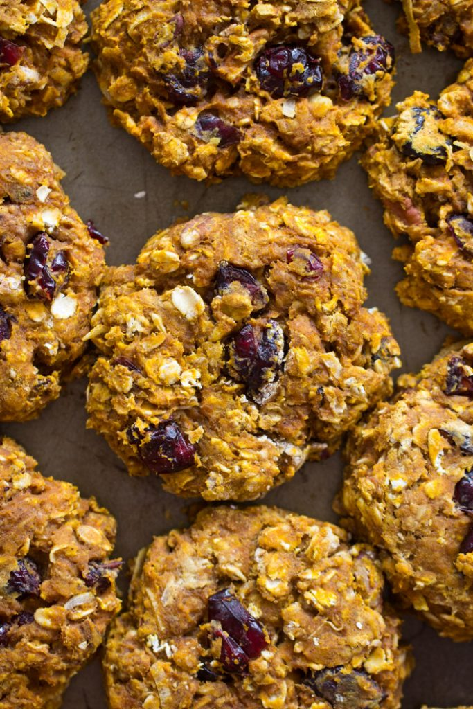 Cranberry Pumpkin Breakfast Cookies recipe image thegoldlininggirl.com 3