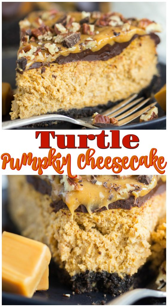 Turtle Pumpkin Cheesecake recipe image thegoldlininggirl.com long pin 2