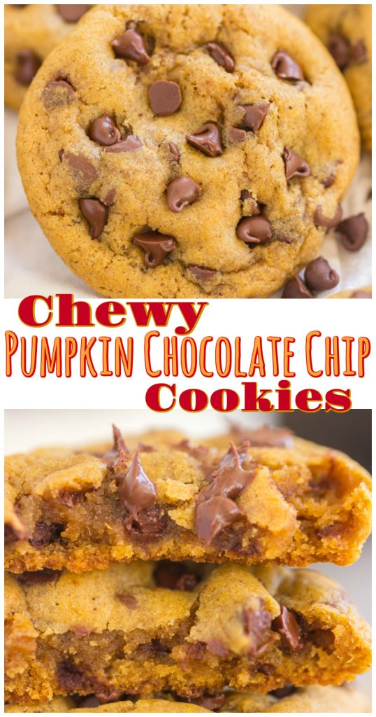Chewy Pumpkin Chocolate Chip Cookies recipe image thegoldlininggirl.com long pin 1