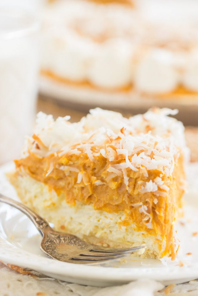 Double Layer No Bake Coconut Pumpkin Cheesecake recipe image thegoldlininggirl.com 11