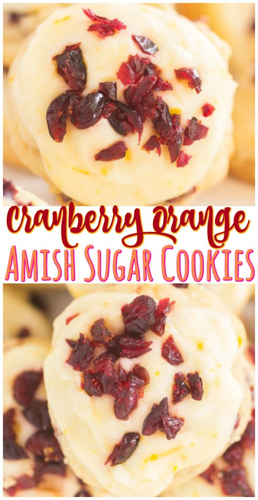 Cranberry Orange Amish Sugar Cookies recipe image thegoldlininggirl.com long pin 1